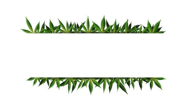 Szablon ramki liści konopi