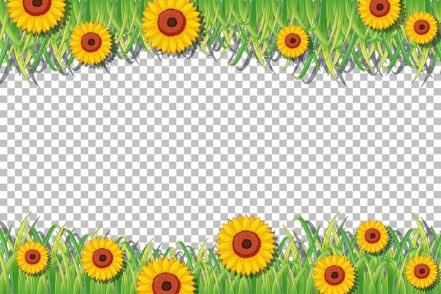 Szablon ramki słonecznika na przezroczystym tle