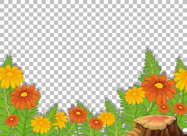 Szablon ramki tropikalnych kwiatów na przezroczystym
