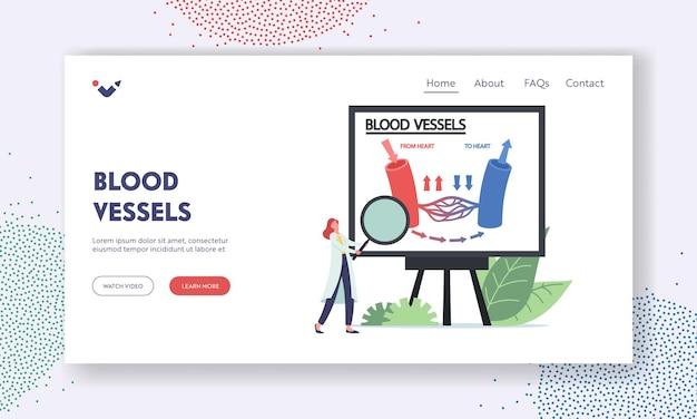 Szablon Strony Docelowej Naczyń Krwionośnych. Mały Lekarz Postać Z Ogromną Lupą Przedstawiającą Infografikę Krążenia Krwi W żyle, Naczynia Tętnicze Anatomii Serca. Ilustracja Wektorowa Kreskówka Ludzie Premium Wektorów