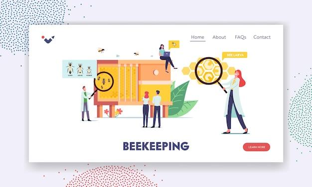 Szablon strony docelowej pszczelarstwa. drobne postacie naukowców i mężczyzn uczące się pszczół w ogromnym ulu z trzema rodzajami owadów królowa, dron i robotnik. ilustracja wektorowa kreskówka ludzie
