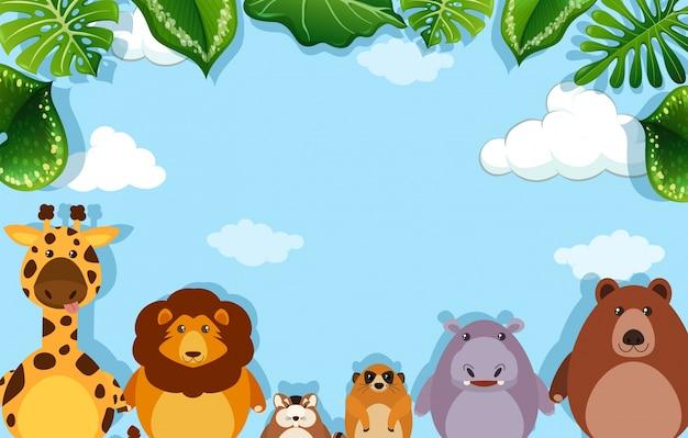 Szablon tła z dzikimi zwierzętami