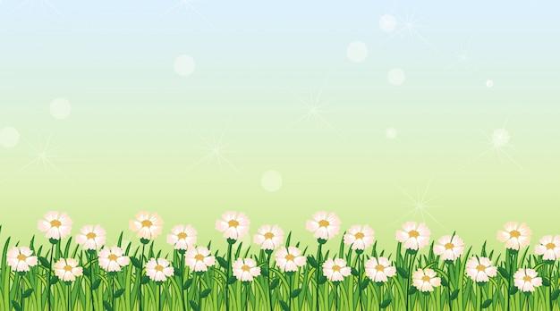 Szablon tło z zieloną trawą i kwiatami