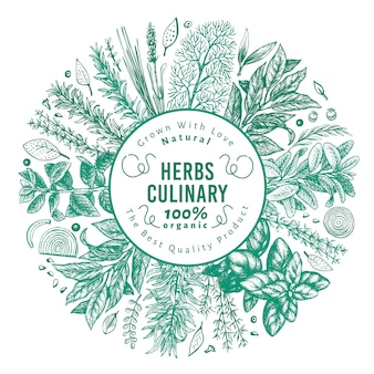 Szablon transparent kulinarne zioła i przyprawy.