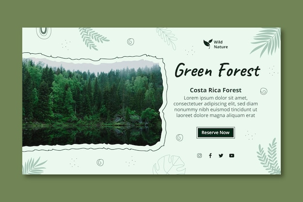 Szablon transparent zielony las