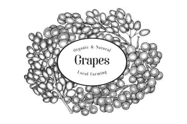 Szablon winogron. ręcznie rysowane ilustracja jagoda winogronowa. grawerowany styl retro botaniczny.