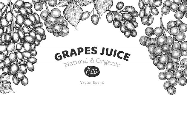 Szablon winogron. ręcznie rysowane winogron jagodowych ilustracja. grawerowany styl retro botaniczny.