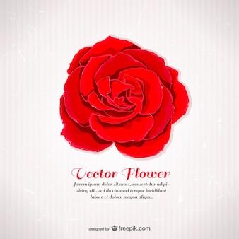 Szablon z czerwoną różą
