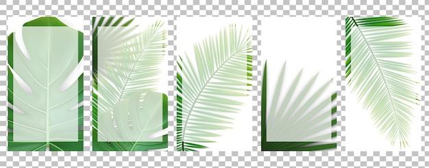 Szablony opowiadań z zielonymi liśćmi tropikalnymi.