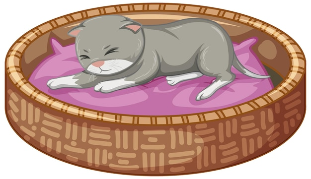 Szary kotek leżący na łóżku na białym tle
