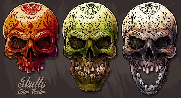 Szczegółowe graficzne kolorowe ludzkie czaszki zestaw