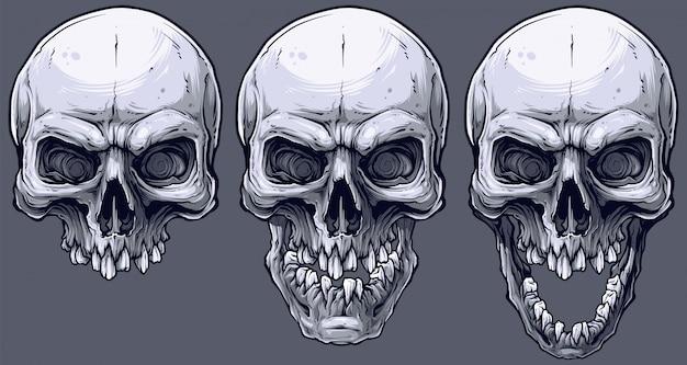 Szczegółowe graficzne zestaw czarno-białych ludzkich czaszek