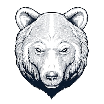 Szczegółowe ręcznie rysowane głowy niedźwiedzia grizzly