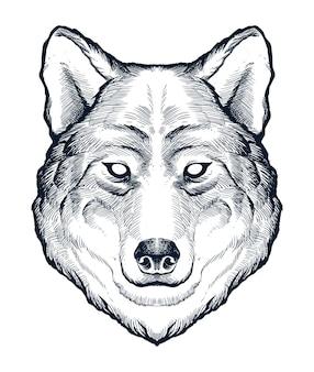 Szczegółowe ręcznie rysowane głowy wilka alfa