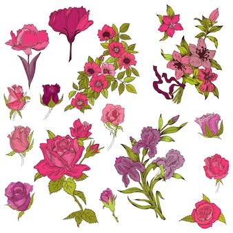 Szczegółowe ręcznie rysowane kwiaty