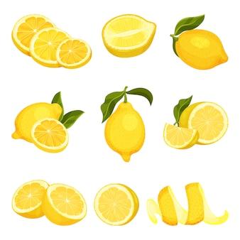 Szczegółowy zestaw cytryn pokrojonych i całych. soczyste owoce cytrusowe. produkt ekologiczny. naturalne i zdrowe jedzenie