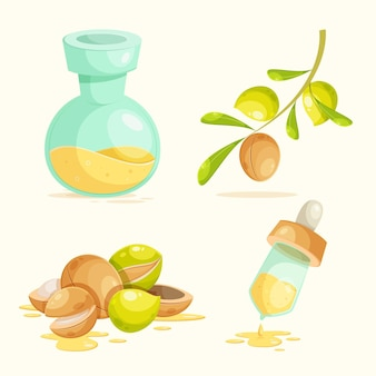 Szczegółowy zestaw elementów olejku arganowego