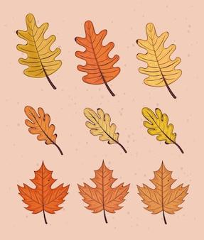 Szczęśliwa karta celebracja dziękczynienia z pakietem zestaw liści projekt ilustracji