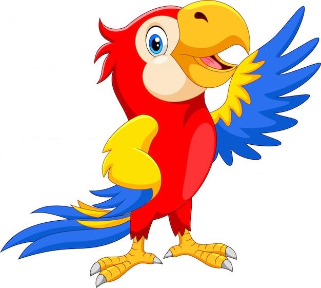 Szczęśliwa papuga kreskówka