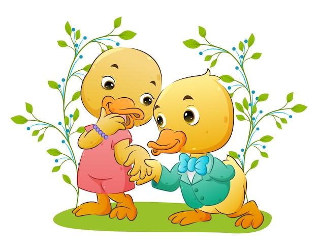 Szczęśliwa para ładny kaczka w parku ilustracji