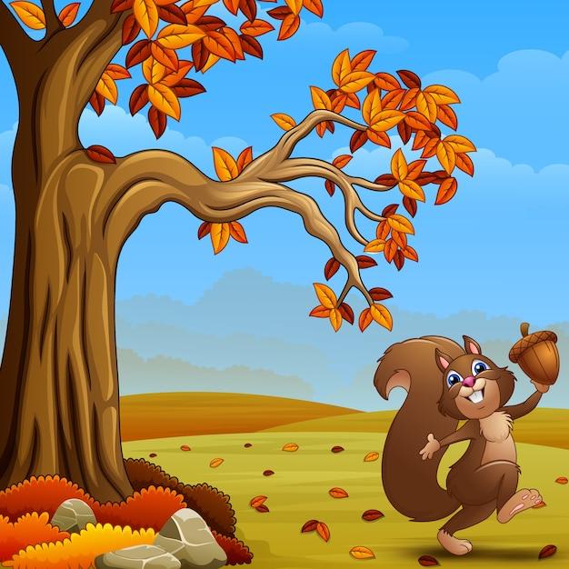 Szczęśliwa wiewiórka trzyma acorn w jesień lesie