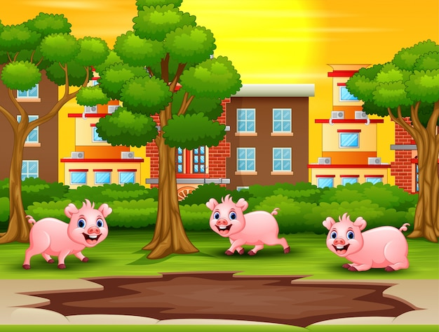 Szczęśliwe świnie widzą kałużę błota i chcą się bawić