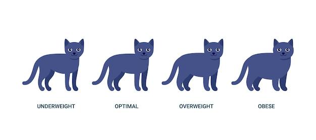 Szczęśliwy ciemnoniebieski szary kot, stojący zwierzak. kot zwierząt domowych. ilustracja wektorowa