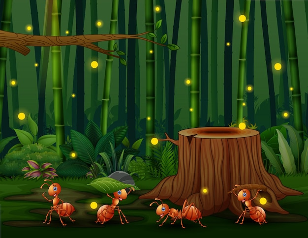 Szczęśliwy cztery mrówki w bambusowym lesie ze świetlikami