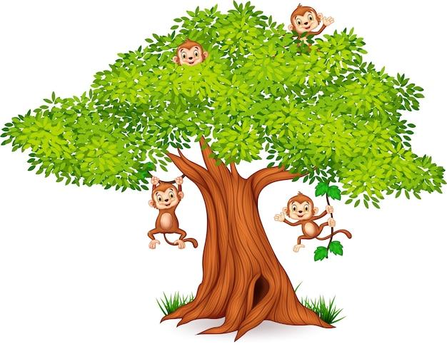 Szczęśliwy mały małpi obwieszenie na drzewie