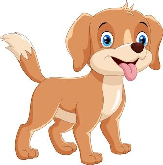 Szczęśliwy pies kreskówka