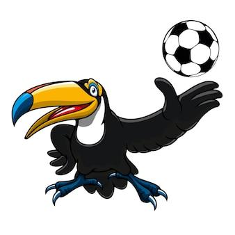 Szczęśliwy tukan ptak gracz postać z kreskówki z piłką na maskotki lub motywy sportowe