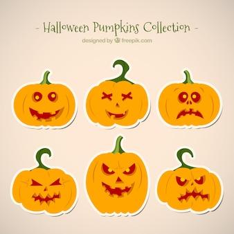 Sześć dynie na halloween