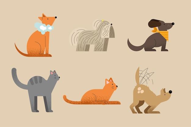 Sześć ikon do mycia zwierząt