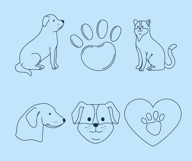 Sześć ikon przyjaznych zwierzętom