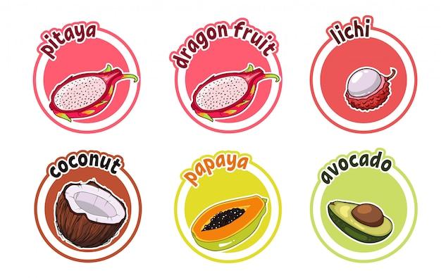 Sześć naklejek z różnymi owocami. owoc smoka, liczi, kokos. papaja i awokado.