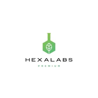 Sześciokąt liść natura laboratorium ikona sześciokąty logo