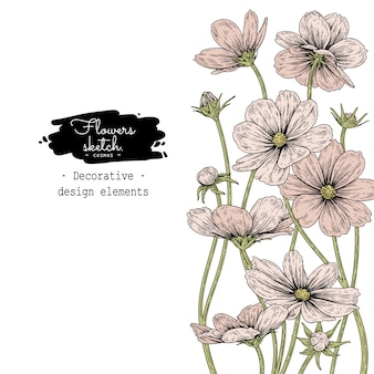 Szkic kolekcja kwiatowa botanika