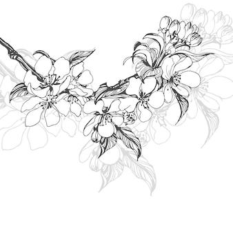 Szkic kwitnącej gałęzi jabłoni. element dla twojego projektu. ilustracja wektorowa