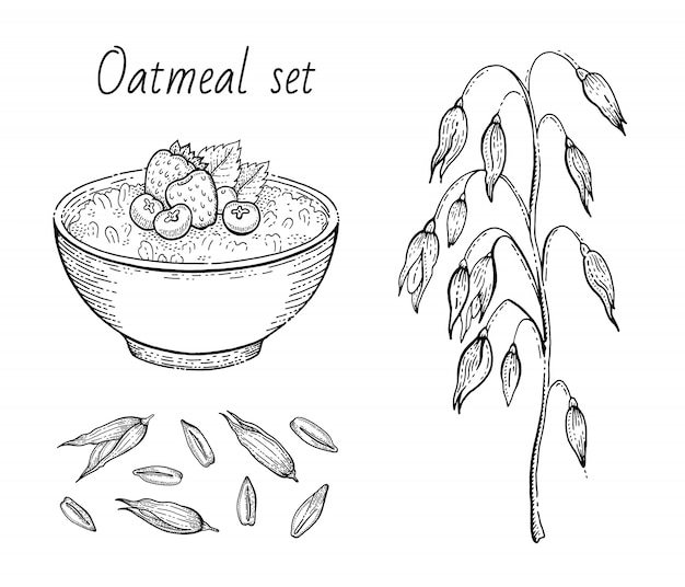 Szkic owies. miska owsianki z mlekiem, owocami, kłosami owsianymi, ziarnem. grawerowane ikony sztuki. linia musli, płatek do zdrowego projektowania słodkich śniadaniowych potraw. zestaw ilustracji.