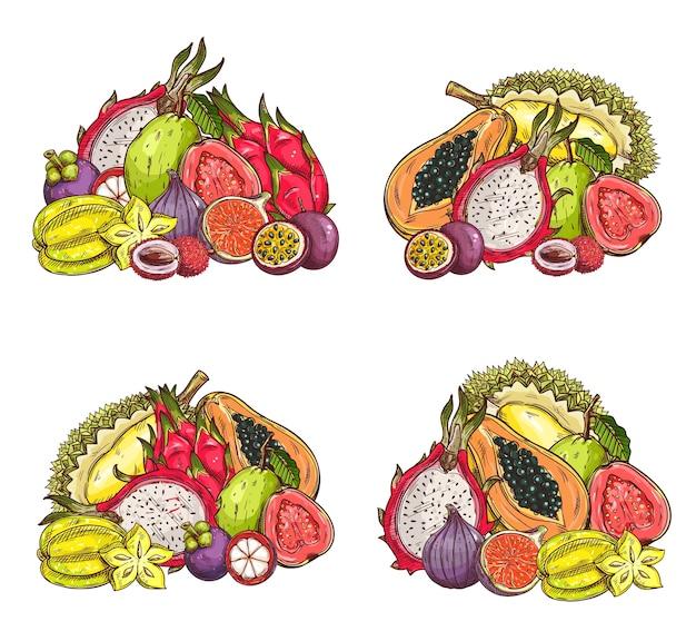Szkic owoców tropikalnych, zbiory sadu egzotyczne liczi, mangostan, figa i smok, marakuja lub pitahaya, karambola lub durian, papaja i guawa. grawerowany zestaw owoców tropikalnych