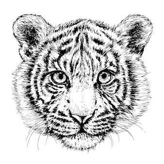 Szkic portret tygrysa ręcznie rysowane ilustracja tuszem czarno-biały tygrys głowa 2022 nowy rok