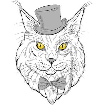 Szkic portret zbliżenie śmieszne hipster kot rasy maine coon