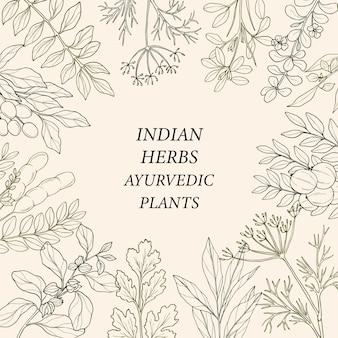 Szkic ramki z ziół indyjskich