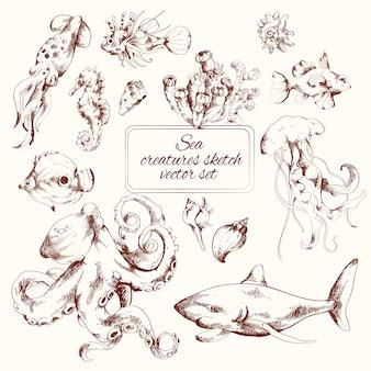 Szkic stworzeń morskich