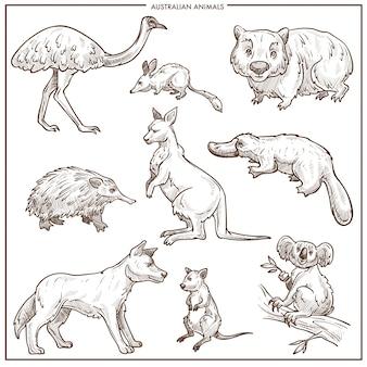 Szkic wektor australijski zwierząt i ptaków