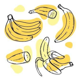Szkice bananów z żółtymi plamami na białym tle