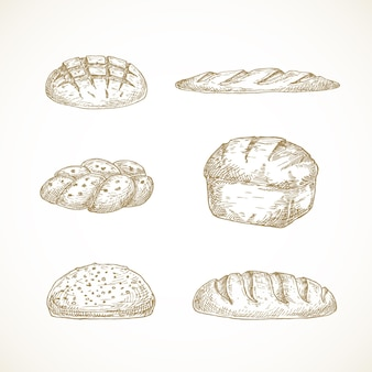 Szkice chleba zestaw ręcznie rysowane z challi bochenka na zakwasie i bagietki