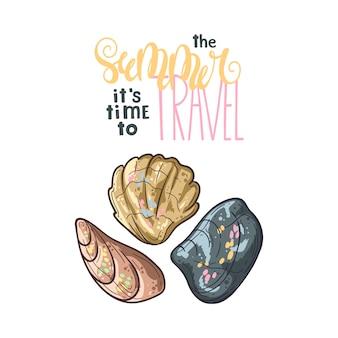 Szkice muszelek. napis: lato to czas podróży.