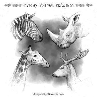 Szkicowe rysunki zwierzętach