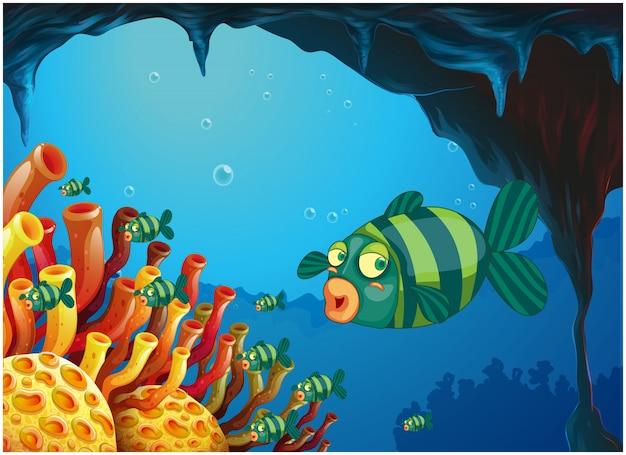 Szkoła rybek w kolorze pasków pod wodą